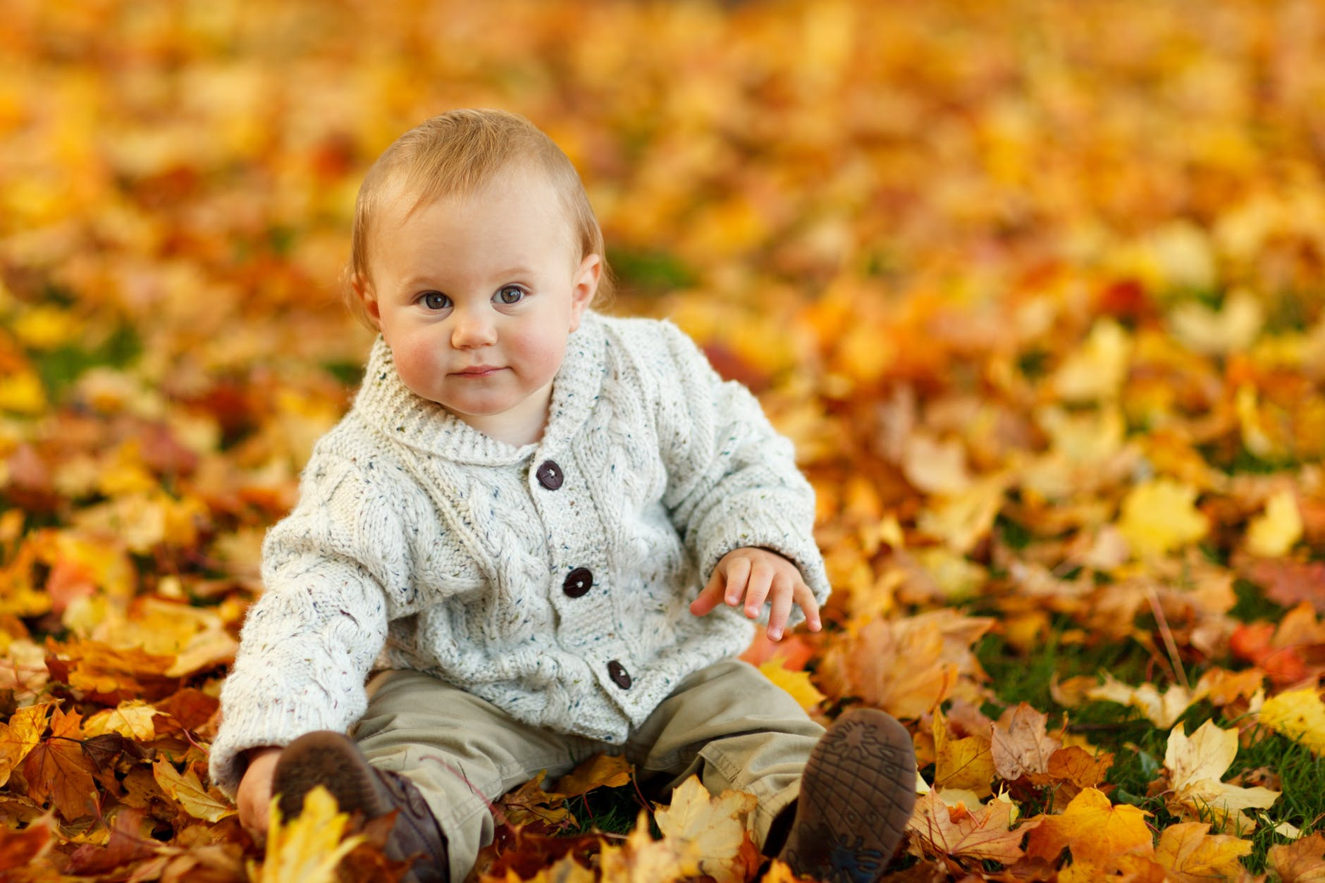 autumn-fall-baby-boy-child-59865